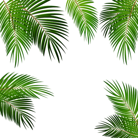 Ilustración de Palm Leaf Vector Background Isolated Illustration EPS10 - Imagen libre de derechos