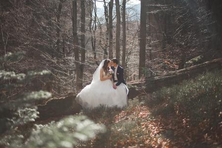 Photo pour Gorgeous wedding couple in forest - image libre de droit