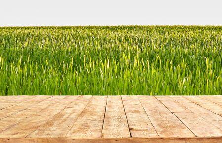 Photo pour Empty wooden table with field landscape, background - image libre de droit