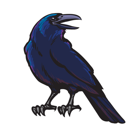 Illustration pour Cartoon black crow isolated on white background. Old and wise bird. Raven Halloween character. - image libre de droit