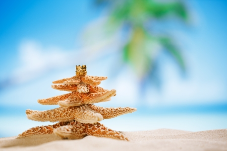 Photo for starfish christmas tree on beach with seascape background - Royalty Free Image