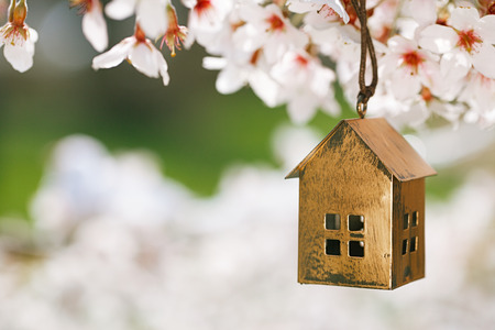 Photo for Little house in Spring with blossom cherry flower sakura - Royalty Free Image