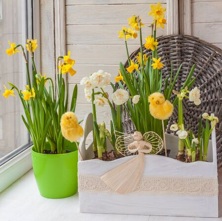 Daffodils in the balcony boxes for flowers and easter eggs on stickers