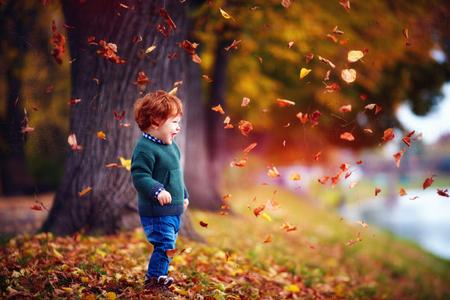 Foto de happy toddler baby boy having fun, playing with fallen leaves in autumn park - Imagen libre de derechos