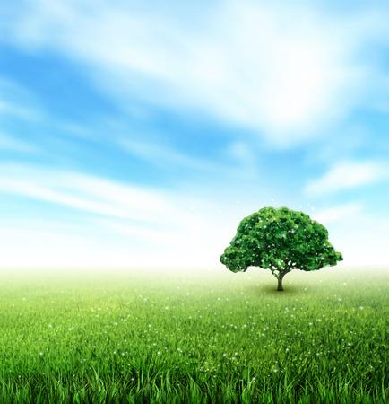 Illustration pour Summer Landscape With Field, Sky, Tree, Grass, Flowe - image libre de droit