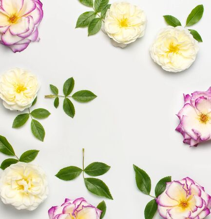 Photo pour Flowers composition. White and pink fresh roses and green leaves on light background. Flat lay, top view, copy space. Flower card, greeting, holiday mockup. Valentine's Day background, womens day. - image libre de droit