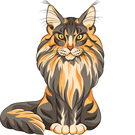 color sketch serios black and red fluffy Maine Coon (American Longhair) cat sitting