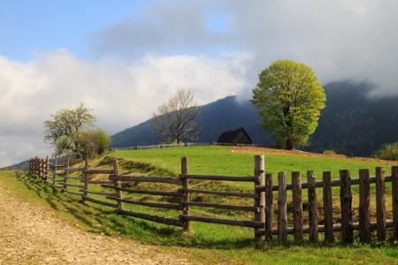 Spring morning landscape wit