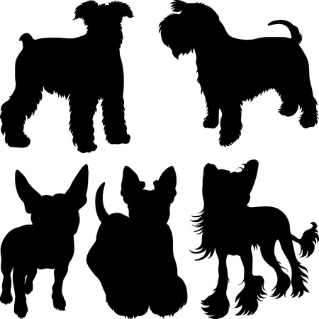 set of silhouettes of dogs schnauzer, terrier, Scottish Terrier, Bull Terrier, Chinese Crested breed in the rack