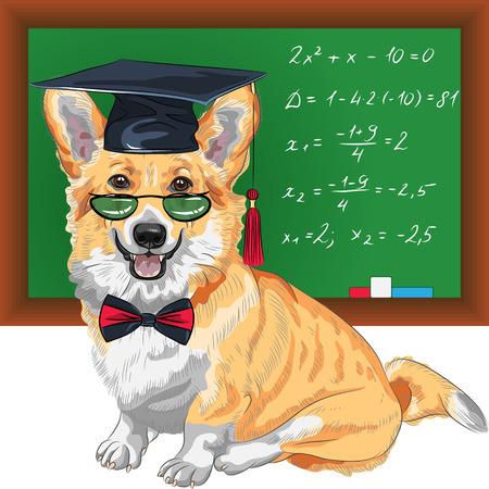 vector graduated dog Pembroke Welsh corgi