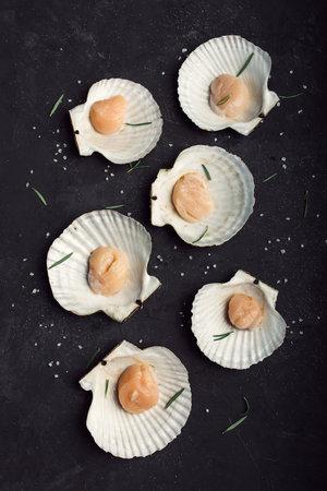 Photo pour Scallops in the shelsl. On a black background. Many. Sea salt. - image libre de droit
