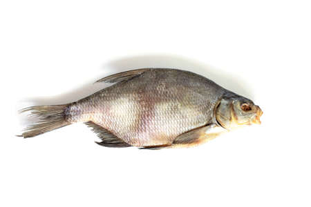 Photo pour isolated close up top view single dried salted bream fish on a white background - image libre de droit