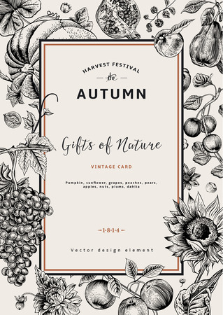 Autumn harvest. Vector vintage card. Frame with flowers, fruits, nuts and pumpkin. Black and White.