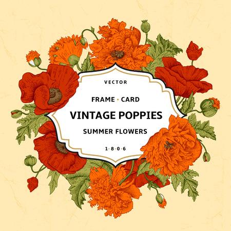 Illustration pour Vintage floral frame with orange, red poppies on a beige background. Vector illustration. - image libre de droit