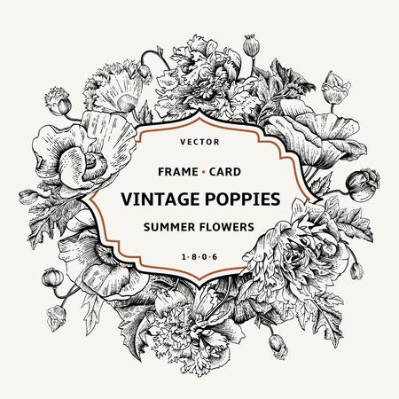 Illustration pour Vintage floral frame with poppies. Vector illustration. Black and white. - image libre de droit