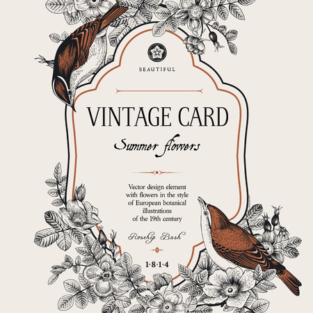 Illustration pour Vector vintage floral card. Two birds in the wild rose bushes. - image libre de droit
