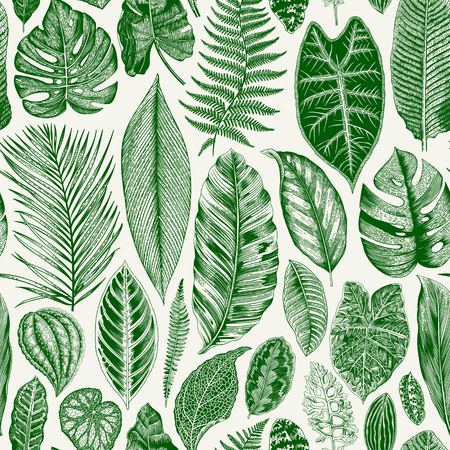 Illustration for Vector seamless vintage floral pattern. Exotic leaves. Botanical classic illustration. Green - Royalty Free Image