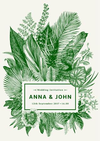 Illustration pour Vector vintage card. Wedding invitation. Botanical illustration. Tropical leaves. Green. - image libre de droit