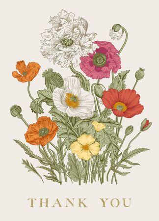 Illustration pour Vintage floral illustration. Bouquet. Flowers Poppies of various varieties. Thank you    - image libre de droit
