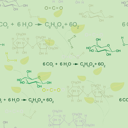 Seamless vector pattern with photosynthesis equation
