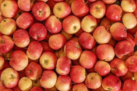 Photo pour Lots of red apples. Natural condition. Top view. - image libre de droit