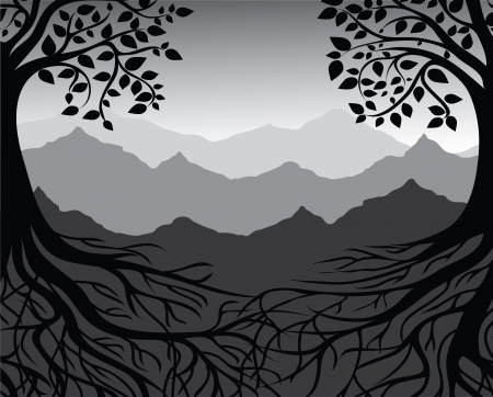 Branch and roots of tree Black and white, mountain