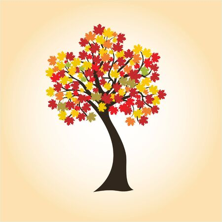 autumn maple with colorful leaves, vector imag for design