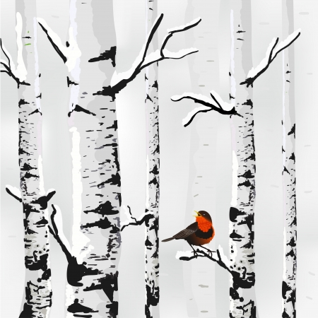 Winter Bird and Birch