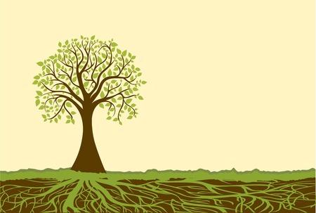 Illustration pour Vector tree - image libre de droit