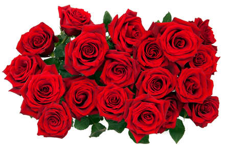Photo for bouquet of red roses on a white background, top view - Royalty Free Image