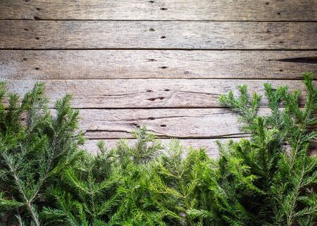 Photo for Holiday banner Green Christmas natural fir spruce branches on white wooden planks. Vintage background Happy New Year greeting card Winter Xmas theme Copy Space for Text - Royalty Free Image
