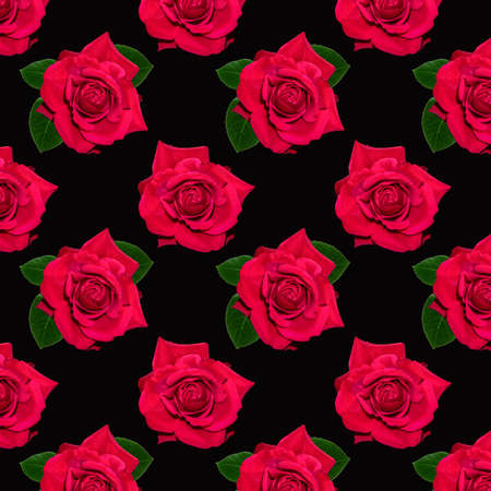 Photo pour Red blooming rose. Background of flowers. Flower pattern. Flowers on a black background. - image libre de droit