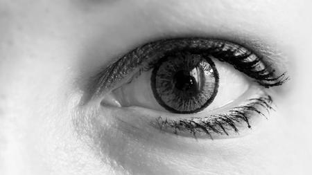 Photo pour Female eye with grey contact lens, macro - image libre de droit