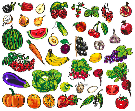 Foto für illustration of colorful vegetables, fruits and berries on a white background - Lizenzfreies Bild
