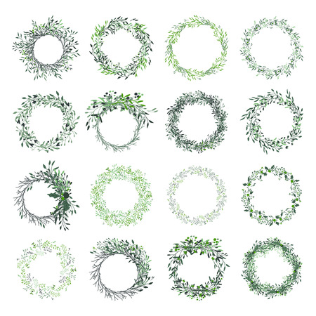 Illustration pour Wreath of leaves, plants, branches and flowers with white background. Hand drawn set for cards, invitations, logo, greeting, wedding invite template illustration. - Vector - image libre de droit