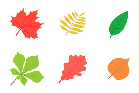 Illustration pour Set of autumn leaves isolated on white background. - image libre de droit