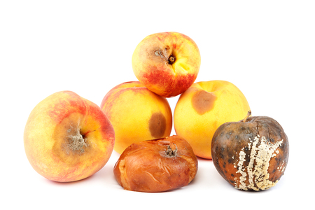 Foto de Fruits of an apple and peach with rot isolated on white background. - Imagen libre de derechos