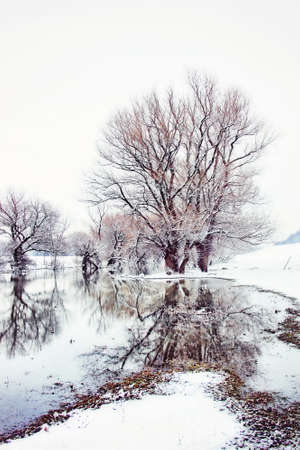 Wintry Day On The River