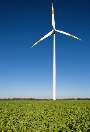 One windmill on the field against a blue sky