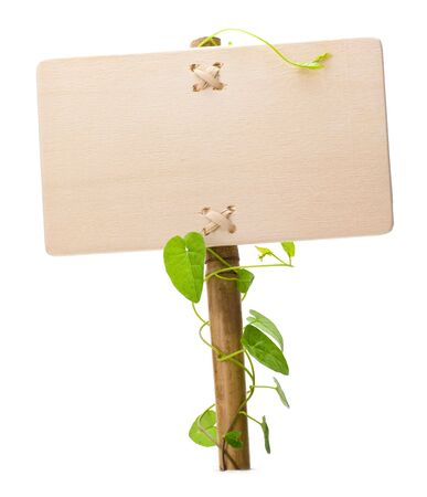 empty sign for message on a wooden panel and green plant - image is isolated on a white background