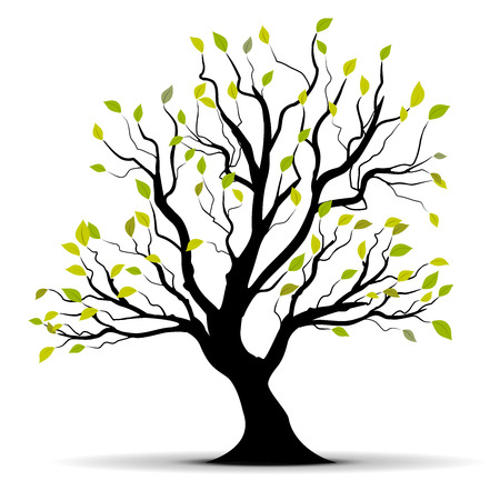 green  tree isolated over a white background