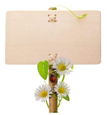 wooden green sign over a white background with daisies and ladybug and green leaves ladybird is over the post of the banner