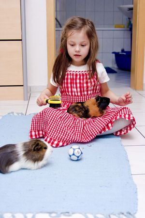 little girl laying with two guinea pigsの写真素材