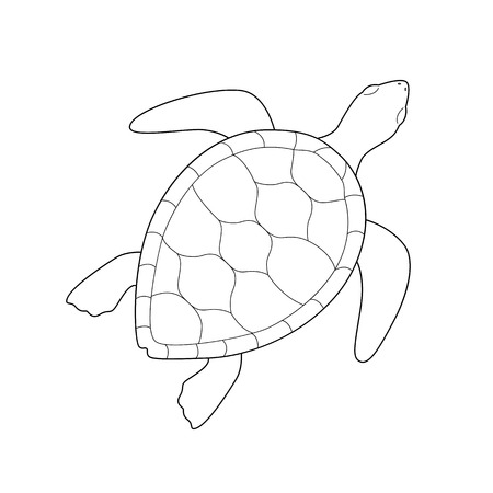 Illustration pour Isolated black outline monochrome sea green turtle on white background. Curve lines. Page of coloring book - image libre de droit