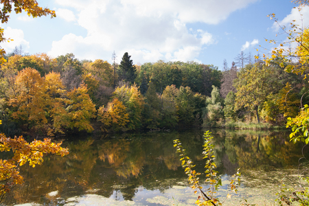 autumn landscape, trees with yellow leaves on the river bank