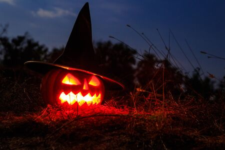 Photo for Spooky Halloween pumpkin jack-o-lantern in witch hat with burning candles in scary forest at night - Royalty Free Image