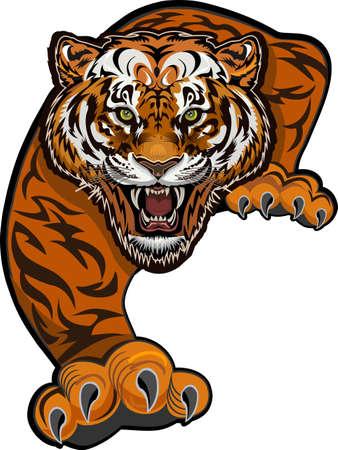 Illustration pour Angry Tiger Jump. Color Tattoo - image libre de droit