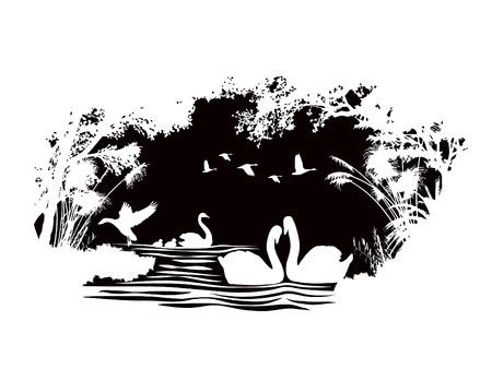 animals of wildlife Swan vector abstract design