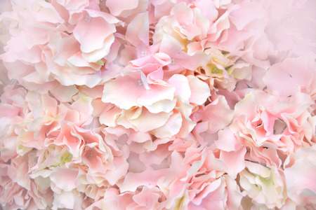 Close up Pink Artificial Flowers soft light abstract background