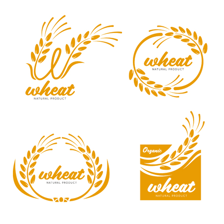 Illustration pour Yellow Paddy Wheat rice grain products food banner sign  art design - image libre de droit